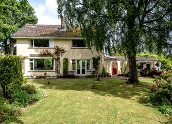 Thumbnail 4 bed detached house for sale in Adcombe Close, Blagdon Hill, Taunton, Somerset