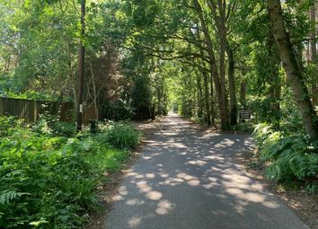 Thumbnail Property for sale in Old Guildford Road, Frimley Green, Surrey