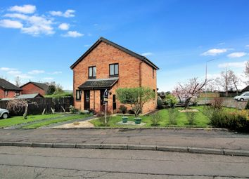 Thumbnail 1 bedroom terraced house for sale in Chestnut Grove, Motherwell