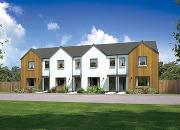 "Thumbnail 3 bed terraced house for sale in ""Argyll Mid"" at Whitehills Gardens, Cove, Aberdeen"