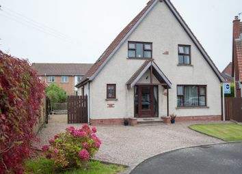 Thumbnail 4 bedroom detached house for sale in Tadworth, Bangor, County Down