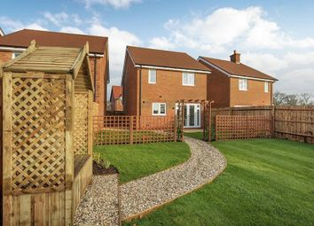 "Thumbnail 3 bed detached house for sale in ""The Brook B"" at Amlets Lane, Cranleigh"