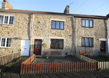 Thumbnail 2 bed terraced house to rent in Poplar Street, Waldridge, Chester Le Street