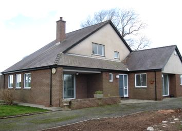 Thumbnail 4 bed detached bungalow to rent in Dinas, Llanwnda