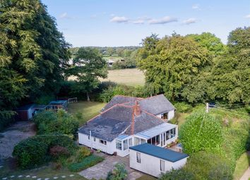 Thumbnail 4 bed detached bungalow for sale in Churchinford, Taunton
