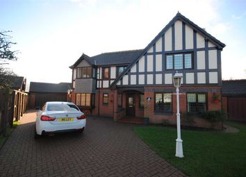 Thumbnail 4 bed property to rent in Turnstone, Herons Reach, Blackpool