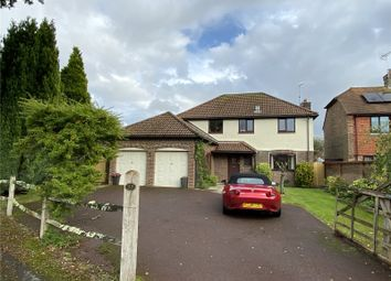 Thumbnail 4 bedroom detached house to rent in Plainwood Close, Chichester, West Sussex