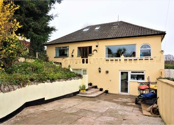 Thumbnail 4 bed detached house for sale in Coles Lane, Newton Abbot