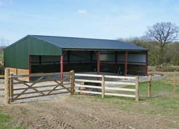Thumbnail Equestrian property for sale in (Lot 2), Brazacott, Launceston