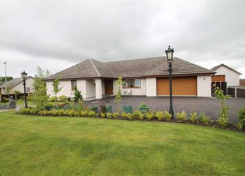 Thumbnail 5 bed detached bungalow for sale in Hawthorn Way, Tain, Highland & Islands