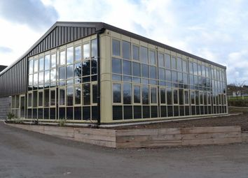 Thumbnail Office to let in Wood Lane, Tugby, Leicester