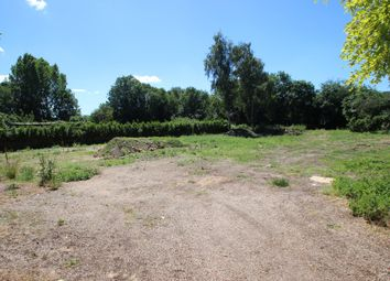 Thumbnail Land for sale in Hadleigh, Ipswich, Suffolk