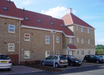 Thumbnail 2 bed flat to rent in Mawkin Close, Norwich