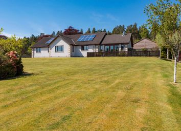 Thumbnail 4 bedroom bungalow for sale in Lamington, Invergordon, Ross-Shire, Highland