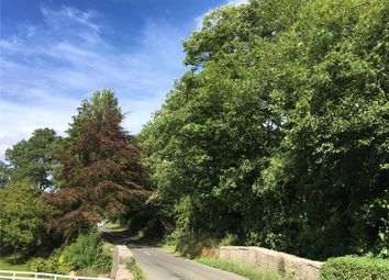 Thumbnail Land for sale in Woodland At Underbarrow, Underbarrow, Kendal, Cumbria