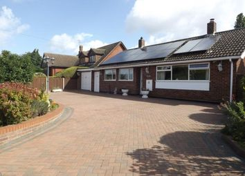 Thumbnail 3 bedroom bungalow for sale in Belstead, Ipswich, Suffolk