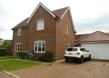 Thumbnail 4 bed property to rent in Cygnet Walk, Stanway, Colchester