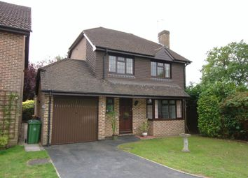 Thumbnail 4 bed detached house to rent in Newark Road, Windlesham