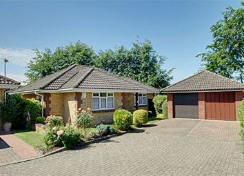Thumbnail 3 bed detached bungalow for sale in Roman Rise, Sawbridgeworth, Hertfordshire