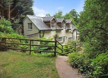 Thumbnail 3 bedroom terraced house to rent in Snodwell Farm, Stockland Hill, Honiton