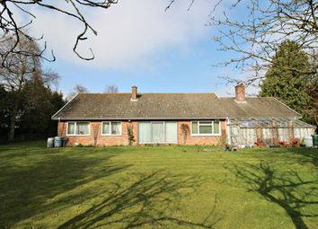 Thumbnail 3 bed bungalow for sale in Geldeston Road, Gillingham, Beccles