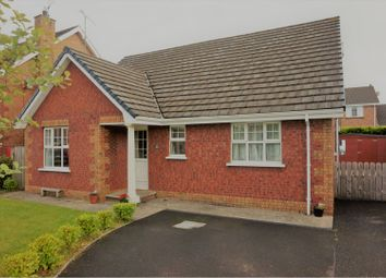 Thumbnail 4 bedroom property for sale in Alderbrook, Eglinton. Derry / Londonderry