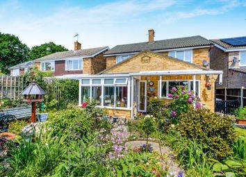 Thumbnail 4 bed detached house for sale in Holton, Halesworth, Suffolk