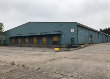 Thumbnail Industrial to let in Unit 4 Nash Mead, Queensway Meadows Ind Estate, Newport