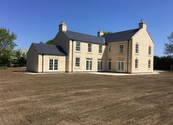Thumbnail 4 bed detached house for sale in Mill Lane, Owmby By Spital