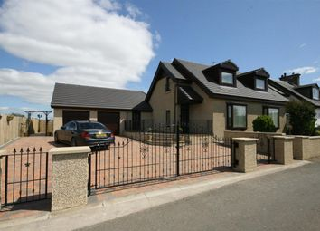Thumbnail 5 bedroom detached house for sale in North Inches, Hamilton Road, Larbert