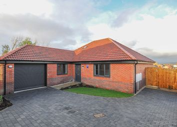 Thumbnail 3 bed detached bungalow for sale in The Danbury, Ravensdale, Brimington