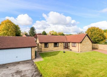 Thumbnail 3 bed detached bungalow for sale in The Paddock, Broomhall Avenue, Wakefield