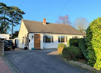 Thumbnail 3 bed detached bungalow for sale in Highclere, Sunninghill, Ascot, Berkshire