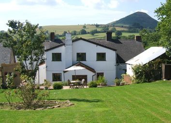 Thumbnail 2 bed farmhouse for sale in Llanvihangel Crucorney, Llanvihangel Crucorney