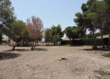 Thumbnail Land for sale in Pinar De Campoverde, Spain