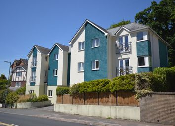Thumbnail 2 bed flat to rent in The Sand Martins St. Marychurch Road, Newton Abbot