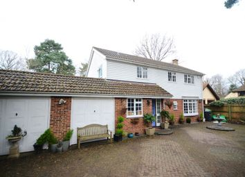 Thumbnail 4 bed detached house to rent in Park Avenue, Camberley