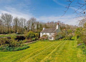 Thumbnail 4 bed detached house for sale in Ermington, Ivybridge, Devon