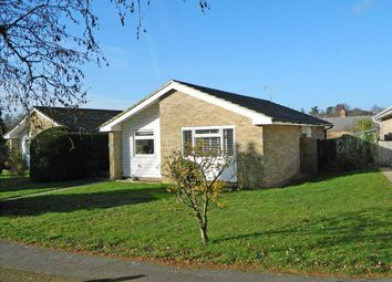 Thumbnail 3 bed detached bungalow for sale in The Fairway, Midhurst