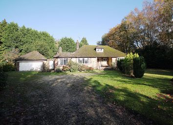 Thumbnail 3 bed bungalow for sale in Castlegate, West Chiltington, Pulborough