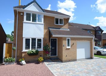 Thumbnail 3 bed detached house for sale in Camerory Way, New Whittington, Chesterfield