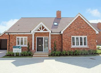 Thumbnail 3 bed detached house for sale in Pampisford Road, Great Abington, Cambridge