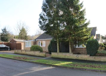 Thumbnail 3 bed detached bungalow to rent in Albion Crescent, Lincoln