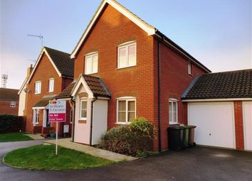 Thumbnail 3 bed link-detached house to rent in Bulrush Avenue, Downham Market