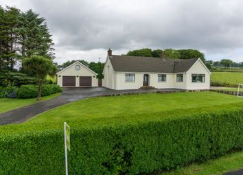 Thumbnail 4 bed detached house for sale in Braepark Road, Ballyclare