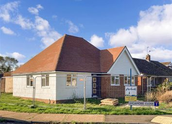 Thumbnail 3 bed detached bungalow for sale in Sycamore Close, Lydd, Kent