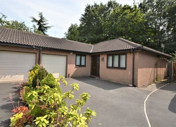 Thumbnail 3 bed semi-detached bungalow to rent in Barley Road, Thelwall, Warrington