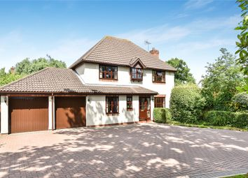 Thumbnail 4 bed detached house for sale in Holly Spring Lane, Bracknell, Berkshire