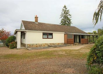 Thumbnail 2 bed detached bungalow for sale in Pinedale, Caerhowel, Montgomery, Powys