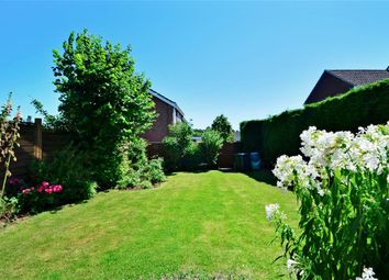 Thumbnail 5 bed semi-detached house for sale in Moggs Mead, Petersfield, Hampshire